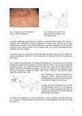 Les abris de Tin Amarasouzi, de Tahountarvat et de ... - StoneWatch - Page 3