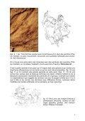 Les abris de Tin Amarasouzi, de Tahountarvat et de ... - StoneWatch - Page 5