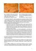 Les abris de Tin Amarasouzi, de Tahountarvat et de ... - StoneWatch - Page 6