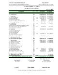 Báo cáo tài chính năm 2009 - CafeF - Page 6