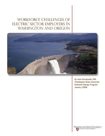 Workforce Challenges of Electric Sector Employers in Washington