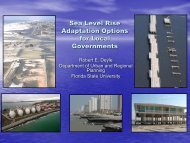 Sea Level Rise Adaptation Options for Local Governments