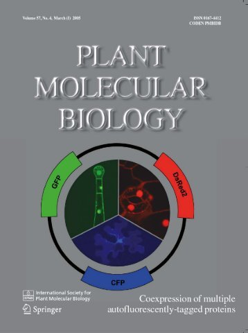 pSAT vectors: a modular series of plasmids for - Stony Brook ...