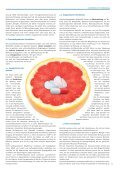 Fortbildung-04/2012-Arzneimittelinteraktionen - Gebr. Storck Verlag - Seite 4