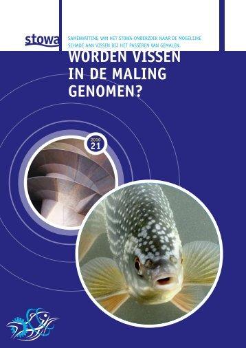 Brochure 'Worden vissen in de maling genomen?' - Stowa