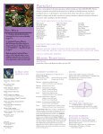 CATHEDRAL TIMES - The Cathedral of St. Philip - Page 2