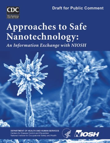 Approaches to Safe Nanotechnology - nanoTruck