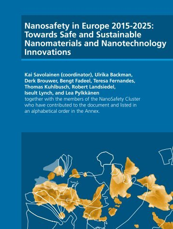 Nanosafety in Europe 2015-2025: Towards Safe and ... - Nanowerk