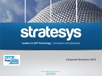 Diapositiva 1 - Stratesys