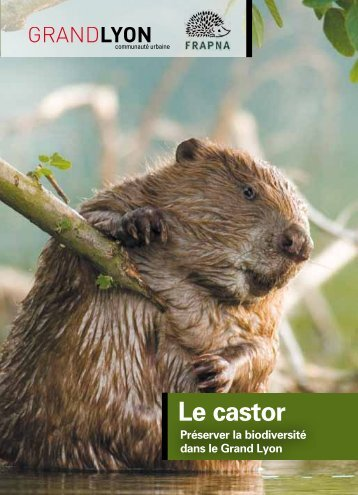 Le castor (novembre 2012) - pdf - 449 Ko - Grand Lyon