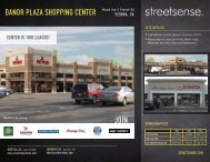DANOR PLAZA SHOPPING CENTER Maple Ave ... - Streetsense