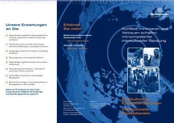 IEB Flyer