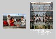 Chronik 2004 - 2008 (pdf) - Stromberg-Gymnasium