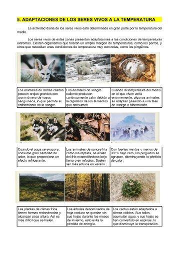5. adaptaciones de los seres vivos a la temperatura - Dolmen de Soto