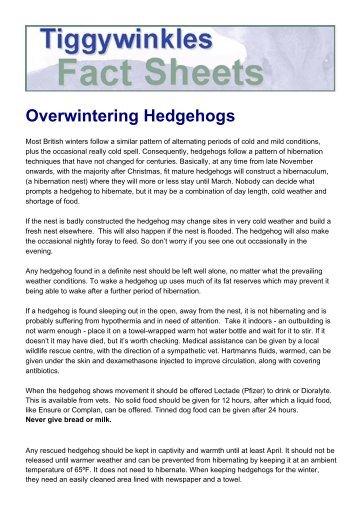 Overwintering Hedgehogs.pdf - St Tiggywinkles