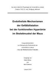 Endotheliale Mechanismen der Gefäßdilatation bei der funktionellen ...