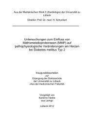 Untersuchungen zum Einfluss von Matrixmetalloproteinasen (MMP ...