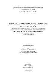 protokollentwicklung, modellierung und datenanalyse für ...