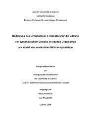 Bedeutung des Lymphotoxin-β-Rezeptors für die Bildung von ...