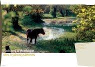 Notion d'écologie des hydrosystèmes - Loire nature
