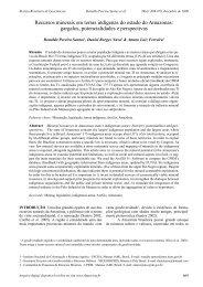 Recursos minerais em terras indígenas do estado do ... - CPRM