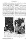 Petrografia e caracterização tecnológica dos gnaisses enderbíticos ... - Page 3