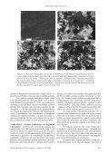 Petrografia e caracterização tecnológica dos gnaisses enderbíticos ... - Page 5