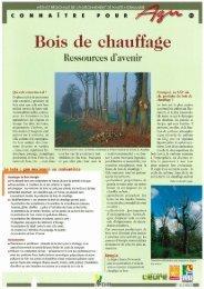 Bois de chauffage : ressources d'avenir - Arehn