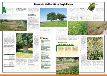 La biodiversité sur l'exploitation agricole - Arehn