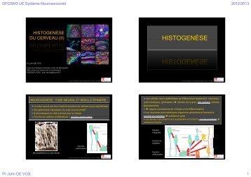 4diapos/page - Faculté de médecine de Montpellier