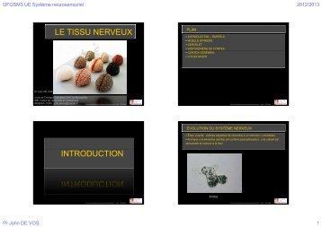 le tissu nerveux introduction - Faculté de médecine de Montpellier