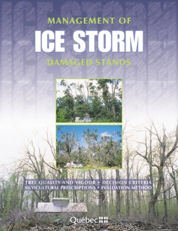 management of ice storm damaged stands - Ministère des ...