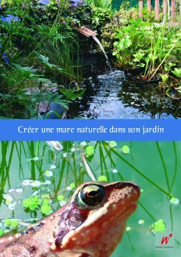 Créer une mare naturelle dans son jardin - Portail environnement de ...