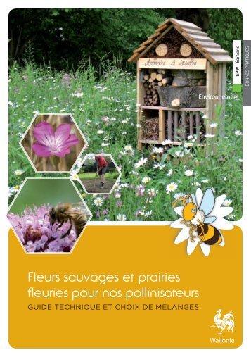 Fleurs sauvages et prairies fleuries pour nos pollinisateurs - Portail ...