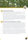 Fleurs sauvages et prairies fleuries pour nos pollinisateurs - Portail ... - Page 5