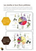 Fleurs sauvages et prairies fleuries pour nos pollinisateurs - Portail ... - Page 6