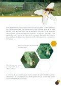 Fleurs sauvages et prairies fleuries pour nos pollinisateurs - Portail ... - Page 7