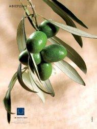 Olive oil - ANEK Lines
