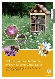 Wildblumen und blühende Wiesen für unsere Bestäuber - Portail ...