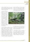 Centre de Recherche de la Nature, des Forêts et du Bois - Portail ... - Page 5