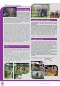 LES JARDINS - Arpe - Page 4