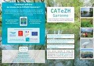 CATeZH - Arpe