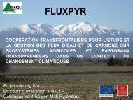 fluxpyr - Arpe