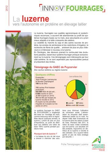 La Luzerne   Chambre Du0027Agriculture De La Dordogne