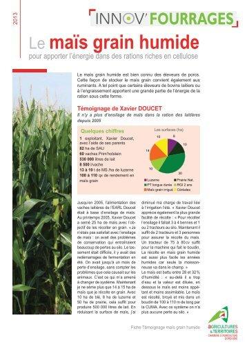 Le Maïs Grain Humide   Chambre Du0027Agriculture De La Dordogne