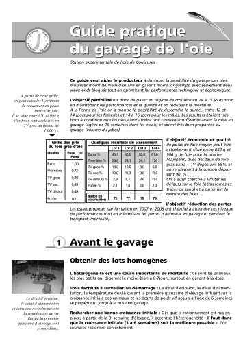 Guide pratique du gavage de l'oie