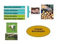 Télécharger - Génie des procédés appliqué à l'agro-alimentaire