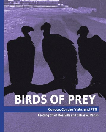 Birds of Prey - PVCInformation.org