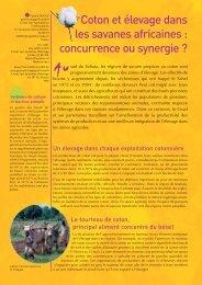 Coton_et_elevage - Cirad