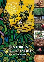Les forêts tropicales dans la vie des hommes - Cirad